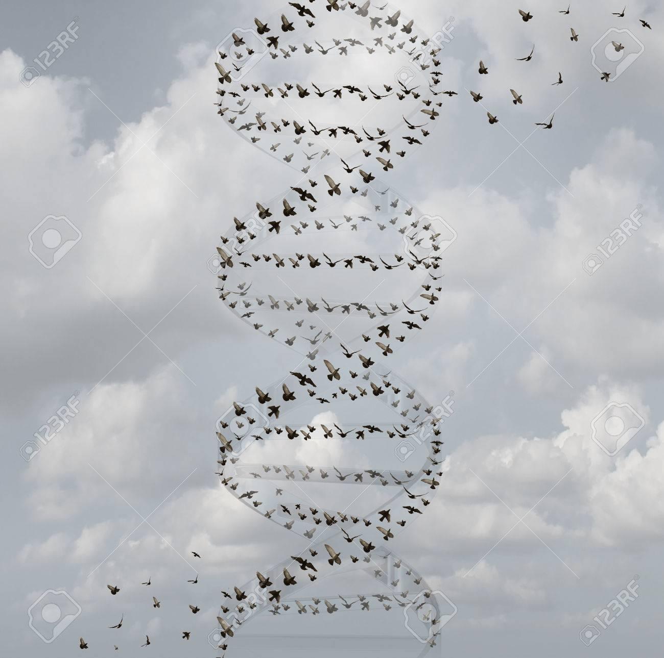 Adn En La Naturaleza Y El Concepto De La Investigación De La Ciencia