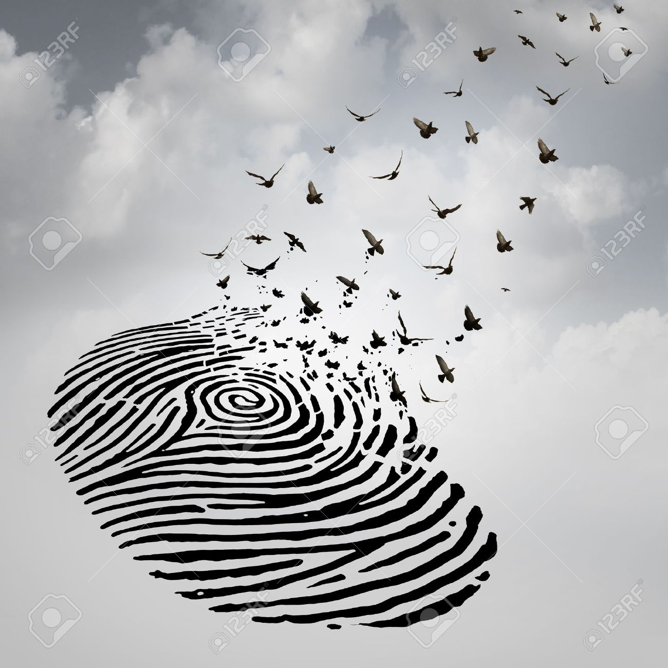 Identity freedom concept as a fingerprint transforming into flying identity freedom concept as a fingerprint transforming into flying birds as a metaphor for a person buycottarizona