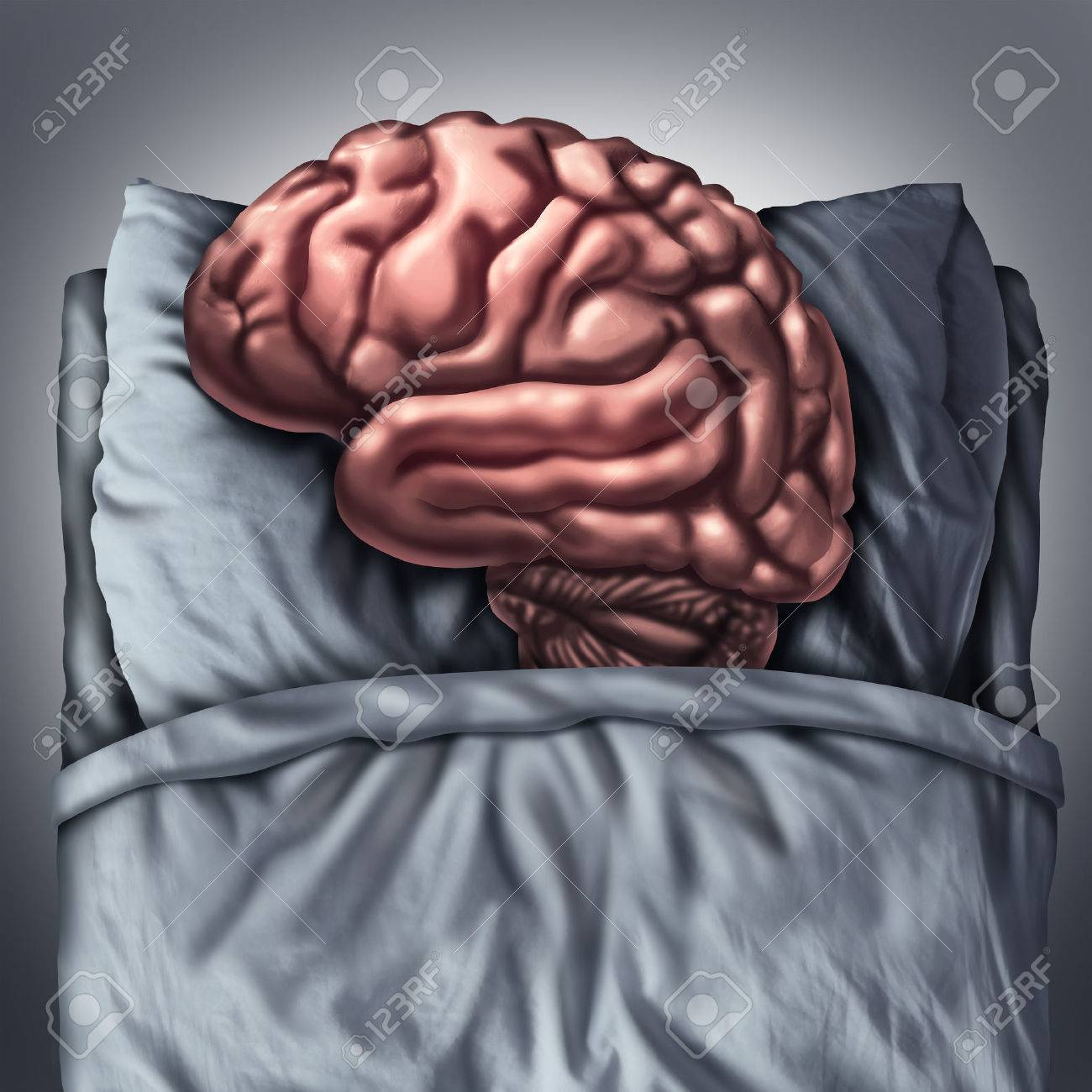 Brain sleep health care and medical concept for benefits of resting the thinking organ by sleeping on a pillow in a bed as a cognitive and neurological metaphor for meditation and deep thought therapy. - 50924012