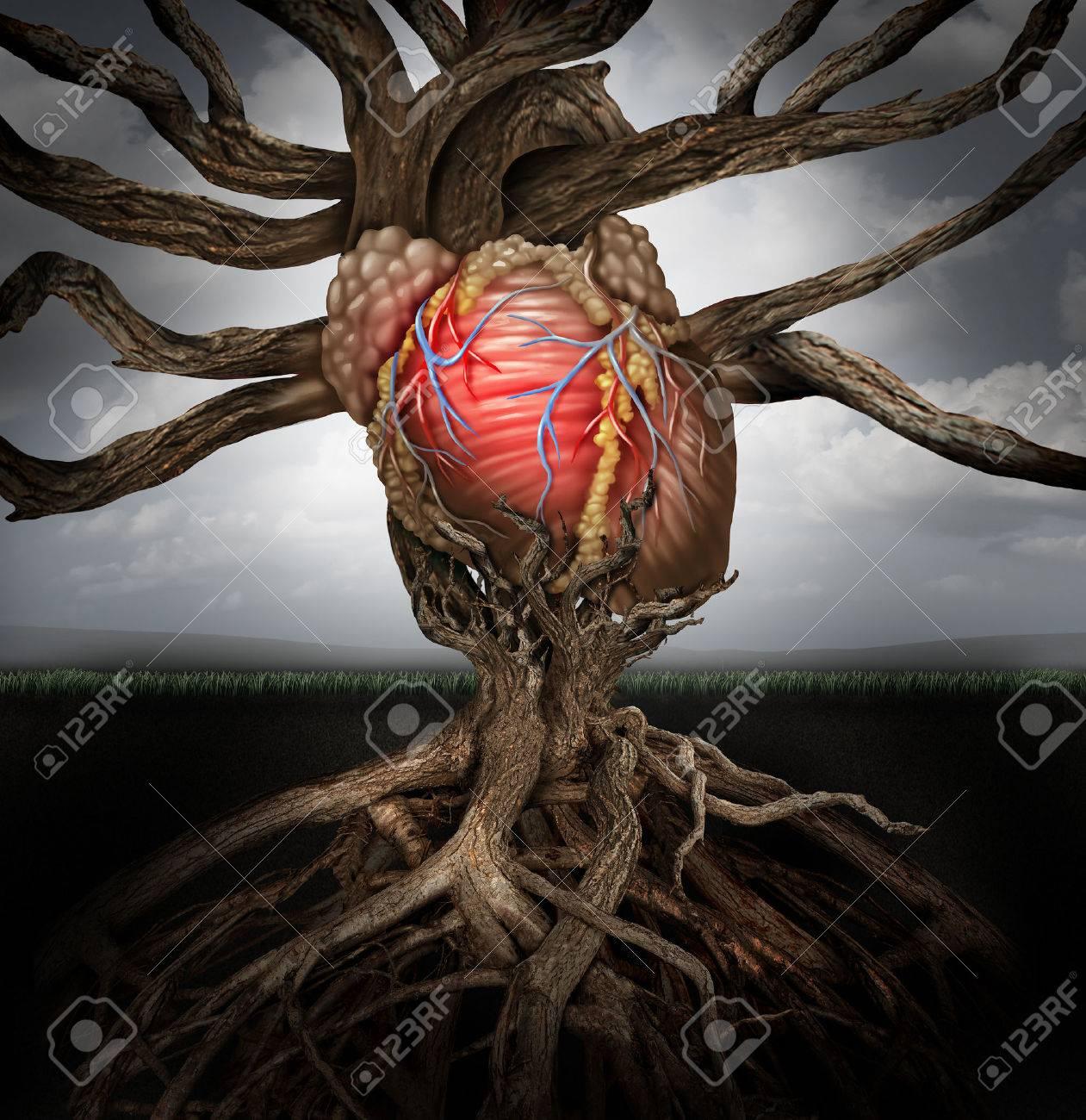 Concepto De Salud Del Corazón Humano Como Un Símbolo Para El Cultivo ...