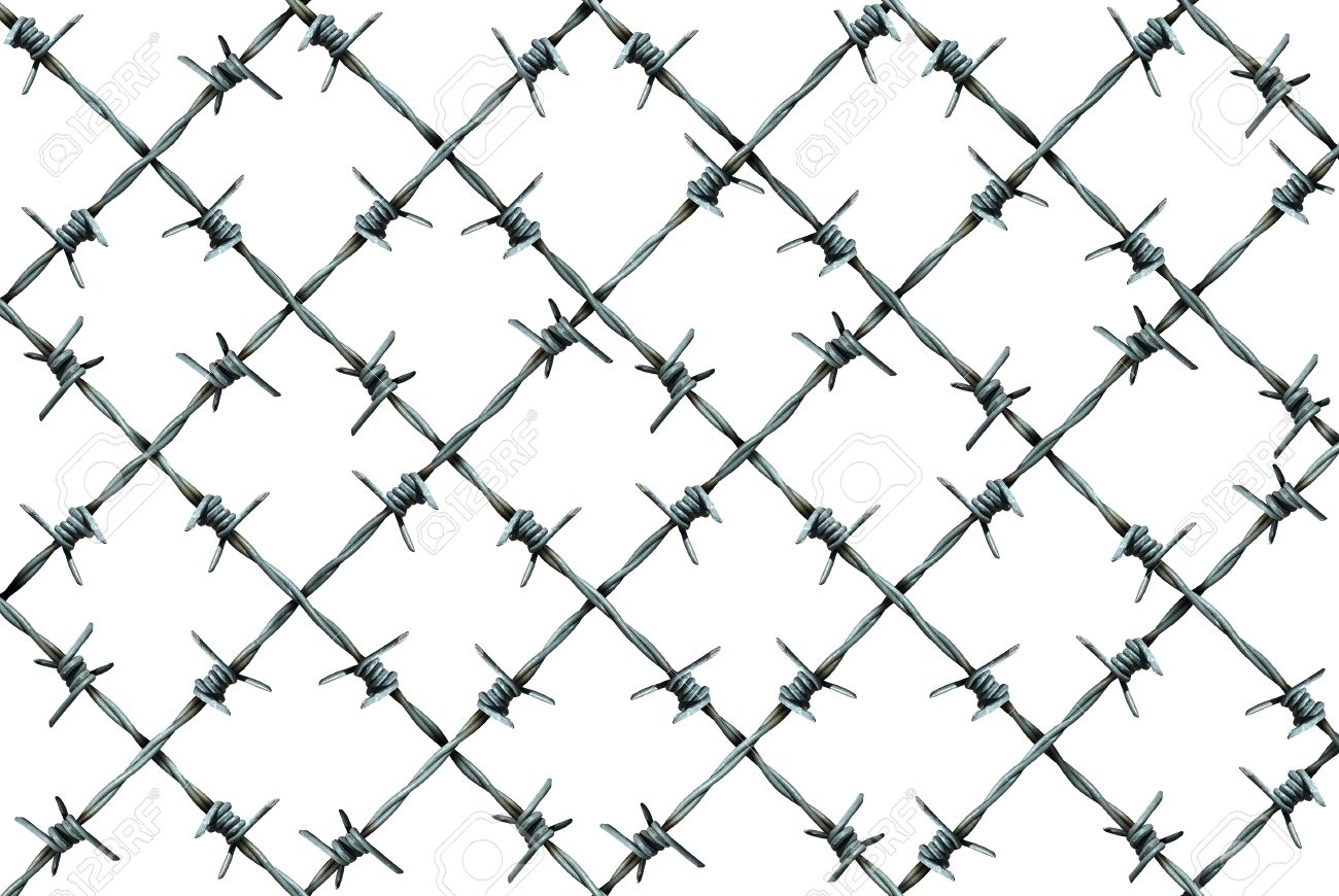 Barbed wire fence pattern isolated on a white background as metal