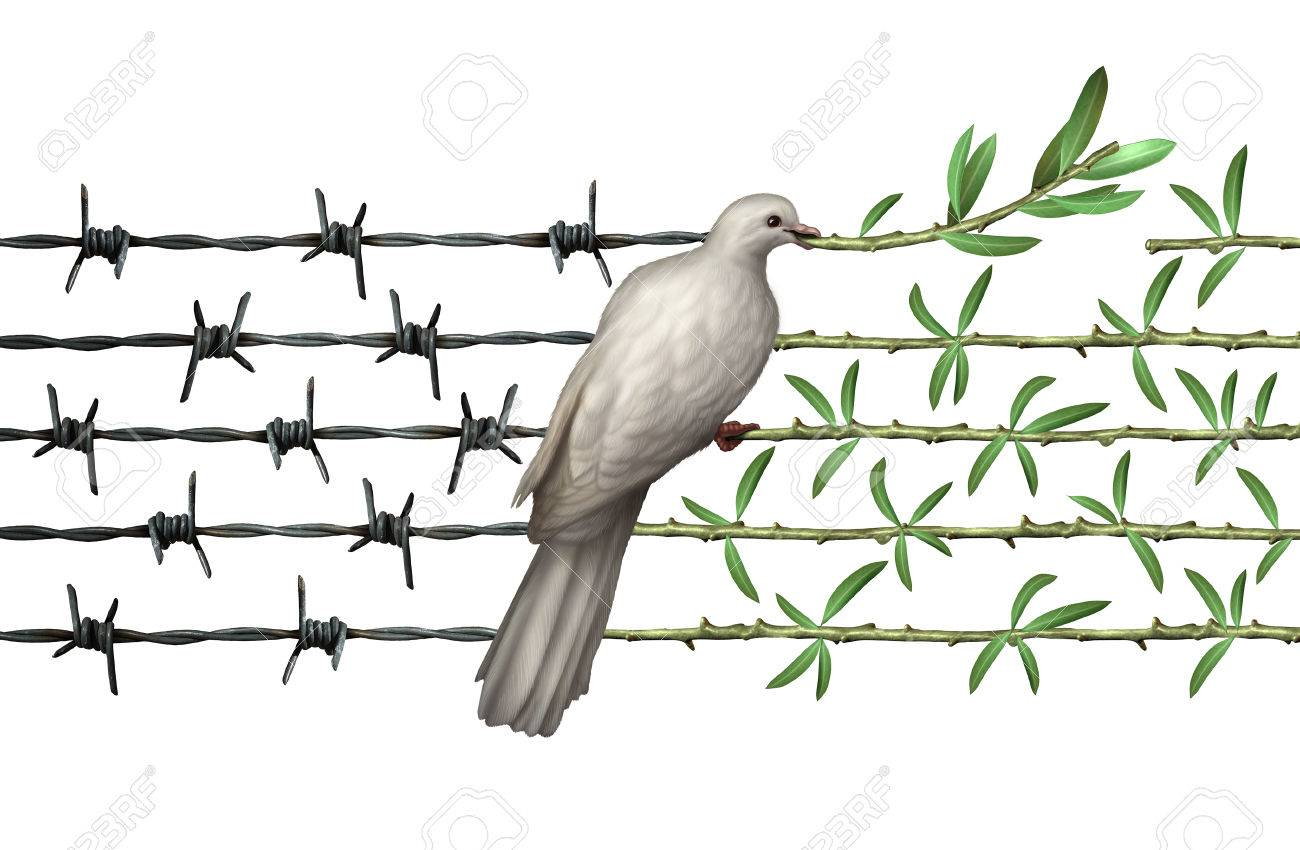 Optimism Concept And Diplomacy Hope Symbol As A Dove On Barbed ...
