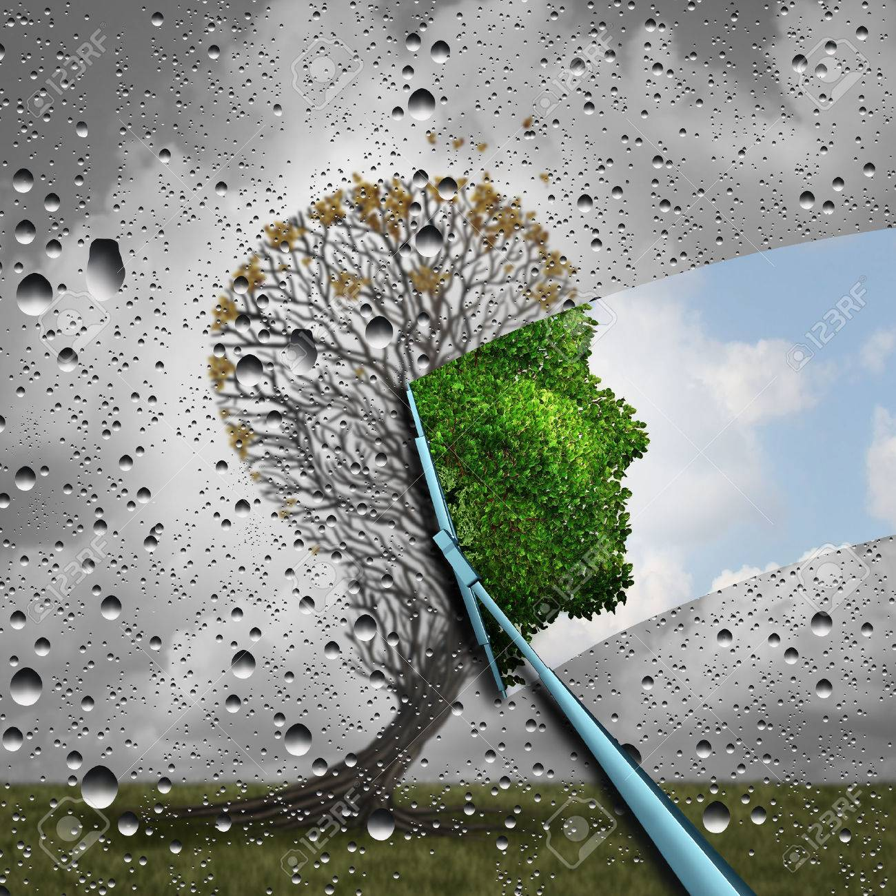 Reverse aging process and make young again medical concept or plastic surgery symbol as a wiper wiping away old decaying tree and revealing to a healthy green human head plant with leaves as a medical metaphor for renewal with 3D illustration elements. Standard-Bild - 59131889