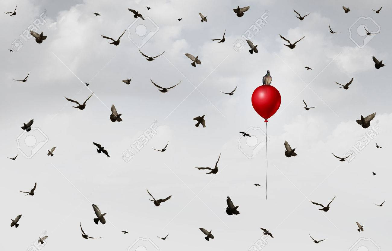 concept of innovation as a group of birds flying in confusion