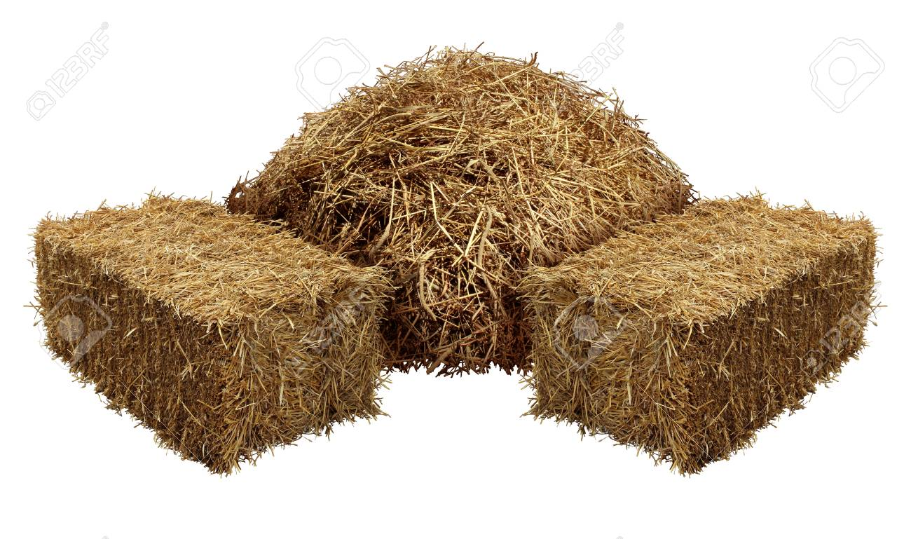 Piles of hay isolated on a white background as an agriculture farm and farming symbol of harvest time with dried grass straw as a mountain of dried grass haystack. - 89096560