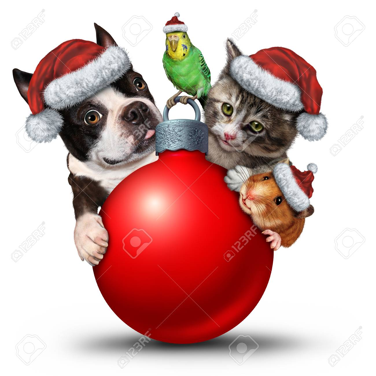Christmas 10x12 FT Backdrop Photographers,Xmas Crew Cat Dog Bird Mouse and Rabbit Bunny with Santa Hats Grumpy Pets Picture Background for Baby Birthday Party Wedding Vinyl Studio Props Photography
