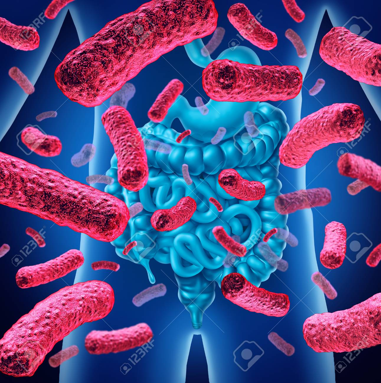 Intestine bacteria and gut flora or intestinal bacterium medical anatomy concept as a 3D illustration. - 101534494