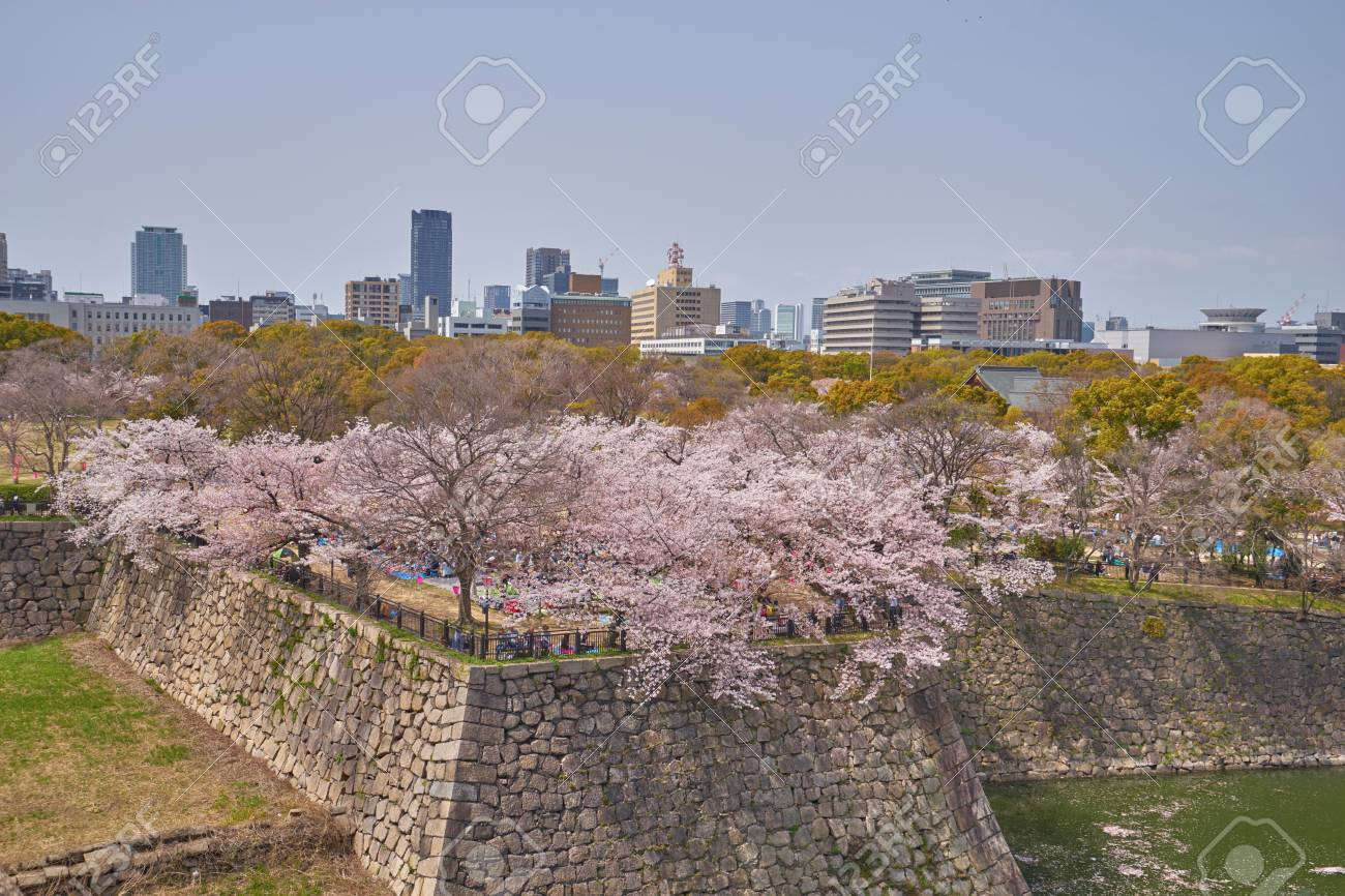 Beautiful Scenic of Nishinomaru Garden in Osaka city, Japan Stock Photo - 102830577