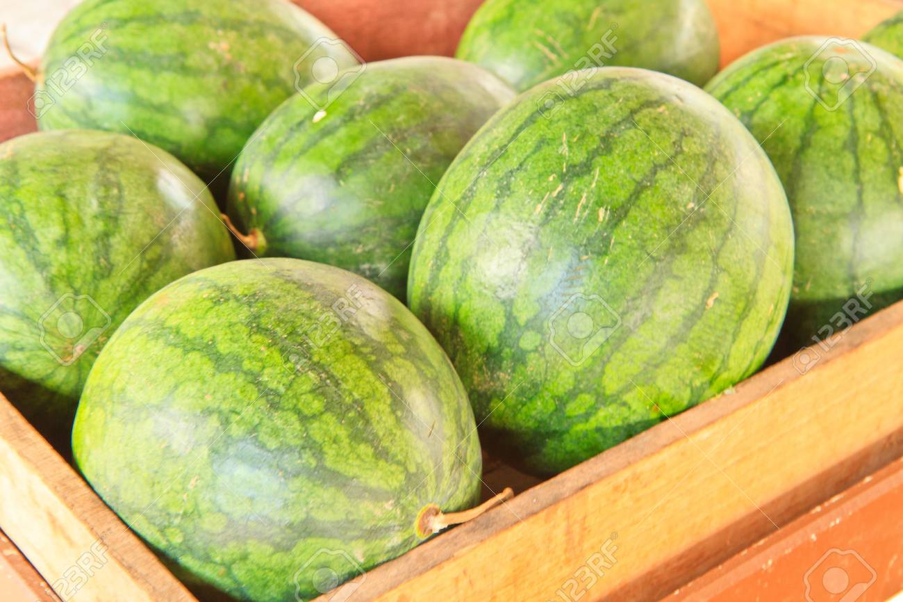 Heap of watermelons Stock Photo - 14361634