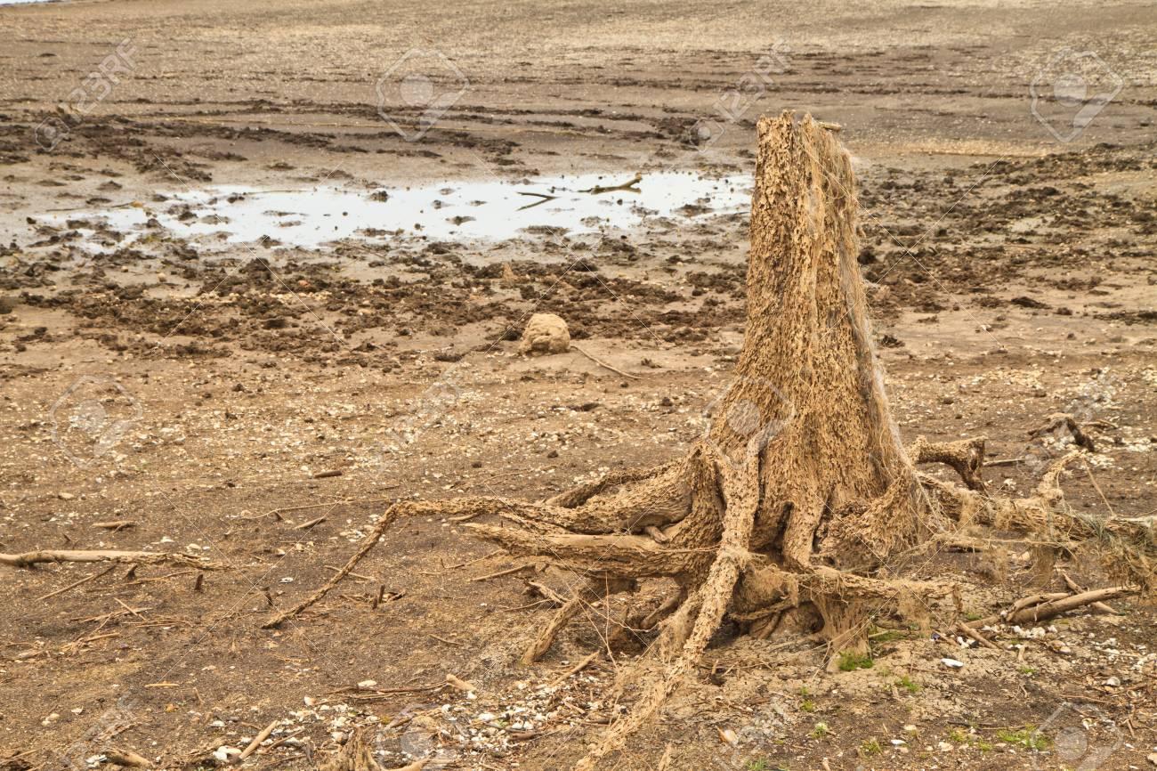 Run dry in Dam, Thailand Stock Photo - 15220875