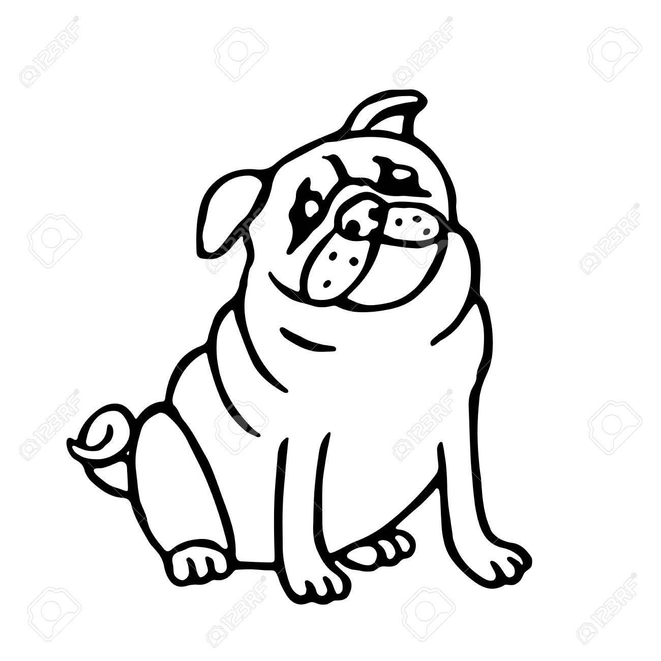 Lindo Contorno Pug. Ilustración De Vector Aislado. Perro De Dibujos ...