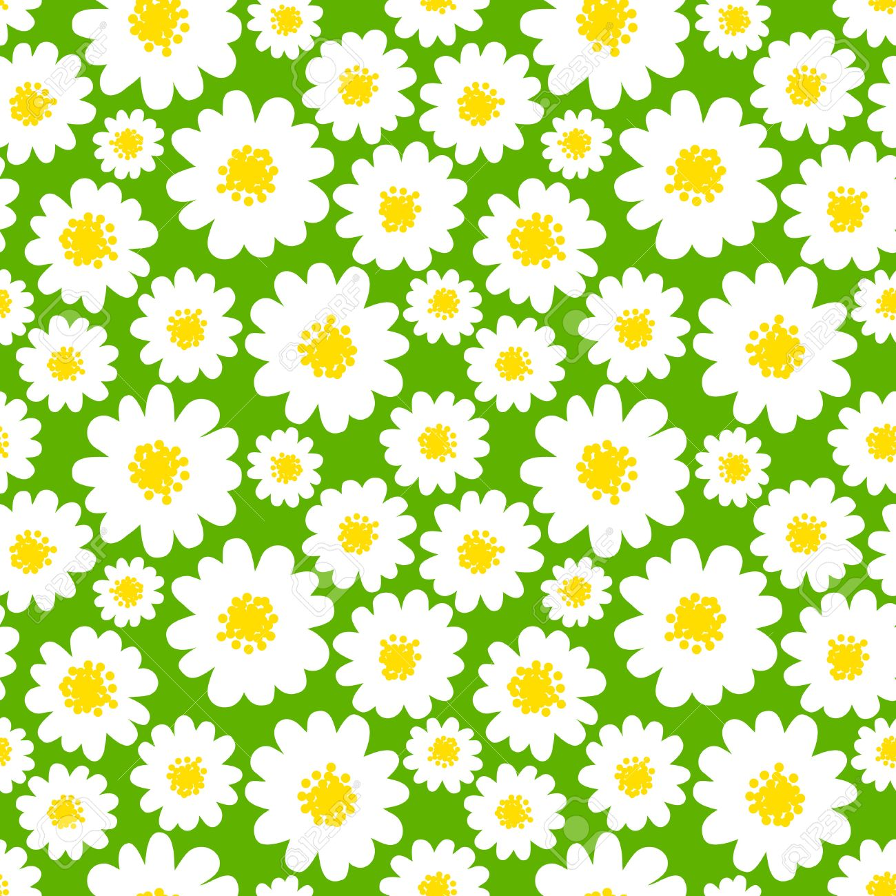 Margaritas Blancas Sin Patrón Sobre Un Fondo Verde Campo De La