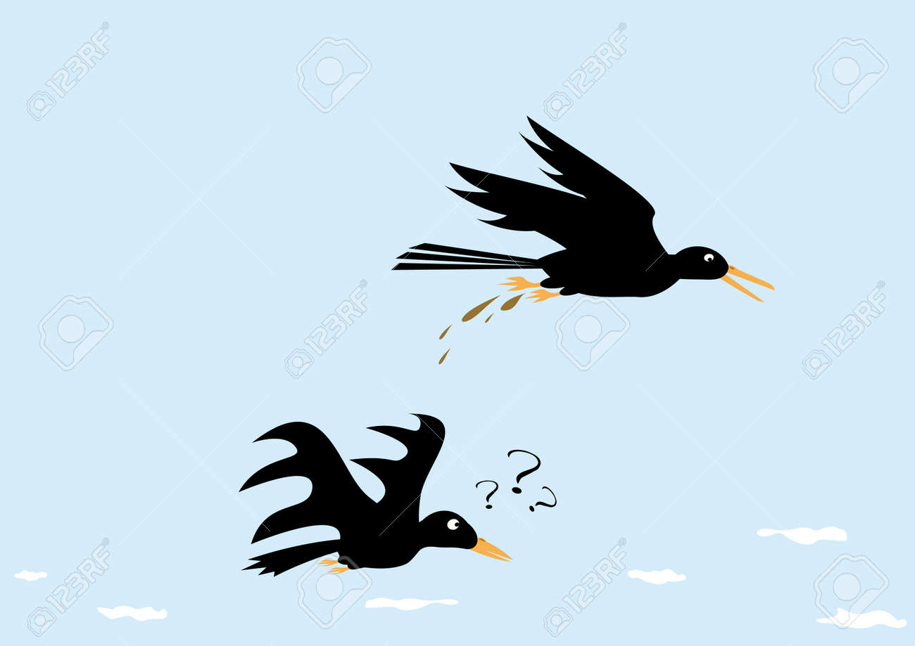 Funny picture with crows Stock Vector - 4736725