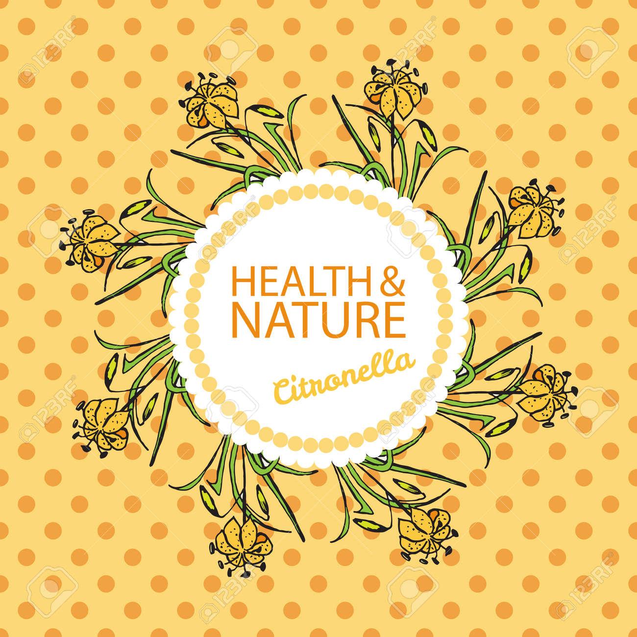 Salud Y Naturaleza Colección. Plantilla De Tarjeta De Identificación ...