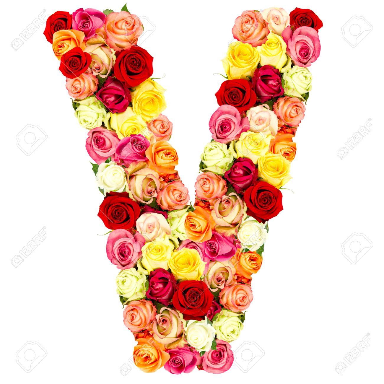 V Roses Alphabet Fleur Isole Sur Blanc Banque D Images Et Photos