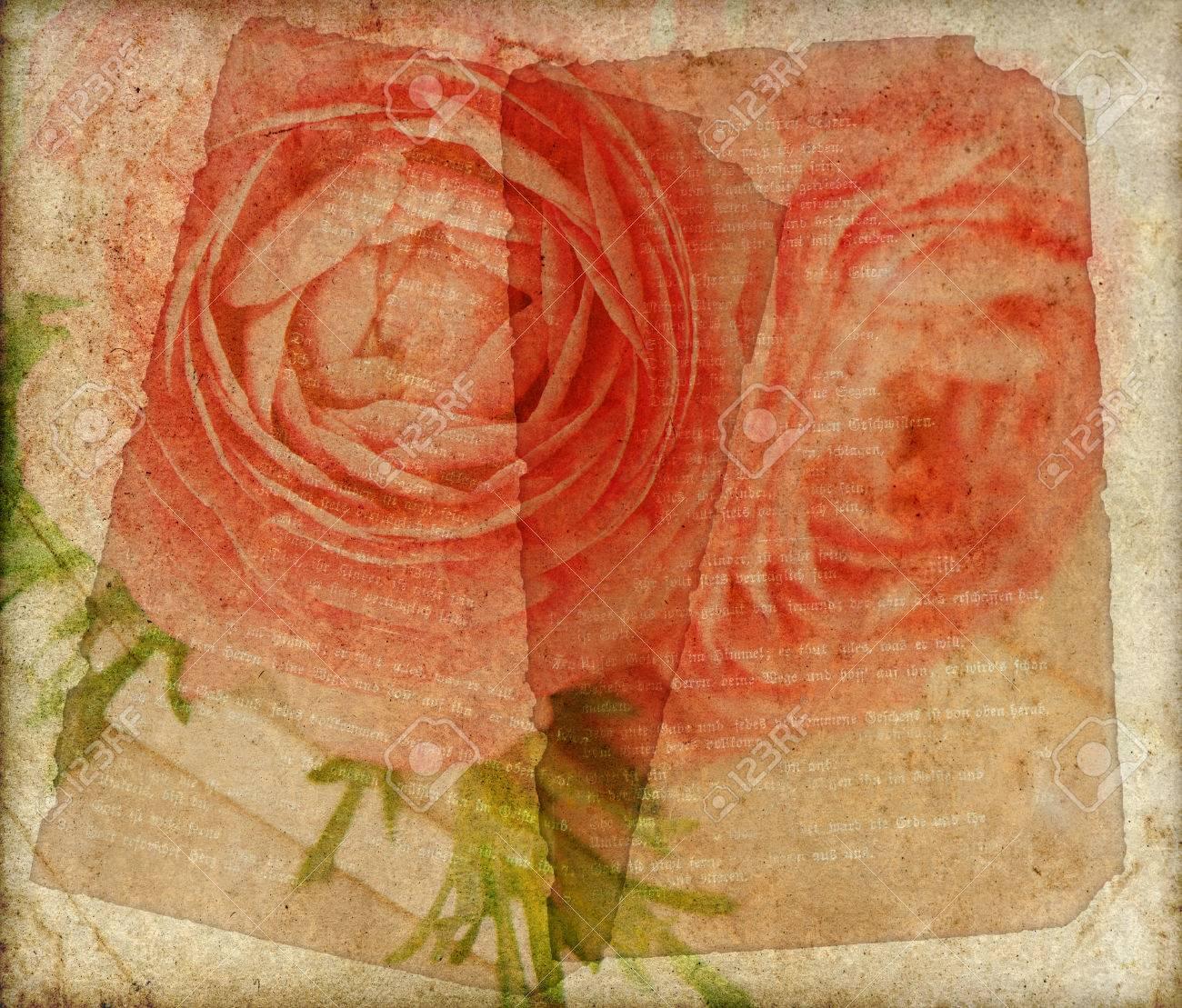 Old Grunge Vintage Paper Floral Background Ranunculus Flowers Stock