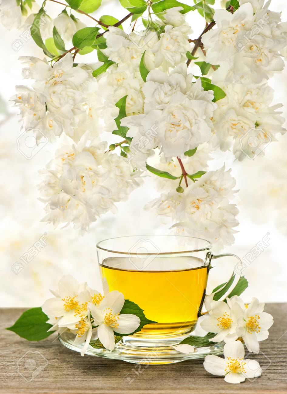 Cup Of Tea With Jasmine Flowers Over Nature Blurred Background Stock