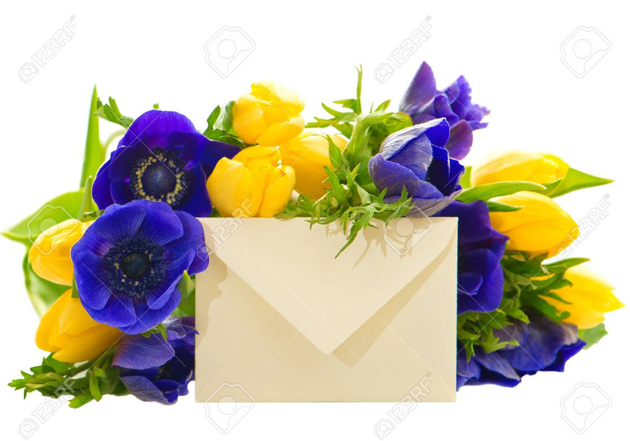 Colorful flowers bouquet with gift card yellow tulips and blue colorful flowers bouquet with gift card yellow tulips and blue anemone on white background stock photo izmirmasajfo