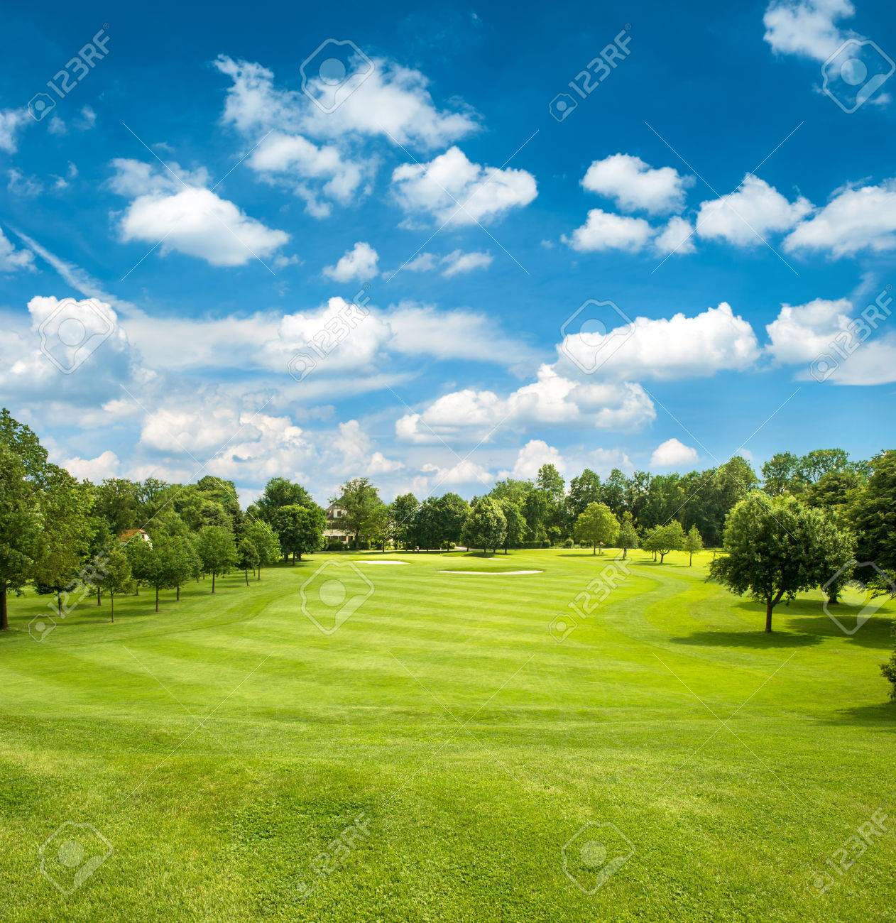 green golf field and blue cloudy sky european landscape - 29758836