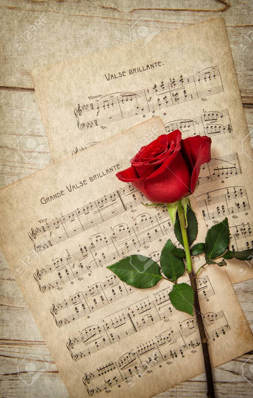 Red Rose Flower And Music Notes Sheet Vintage Grunge Texture Stock