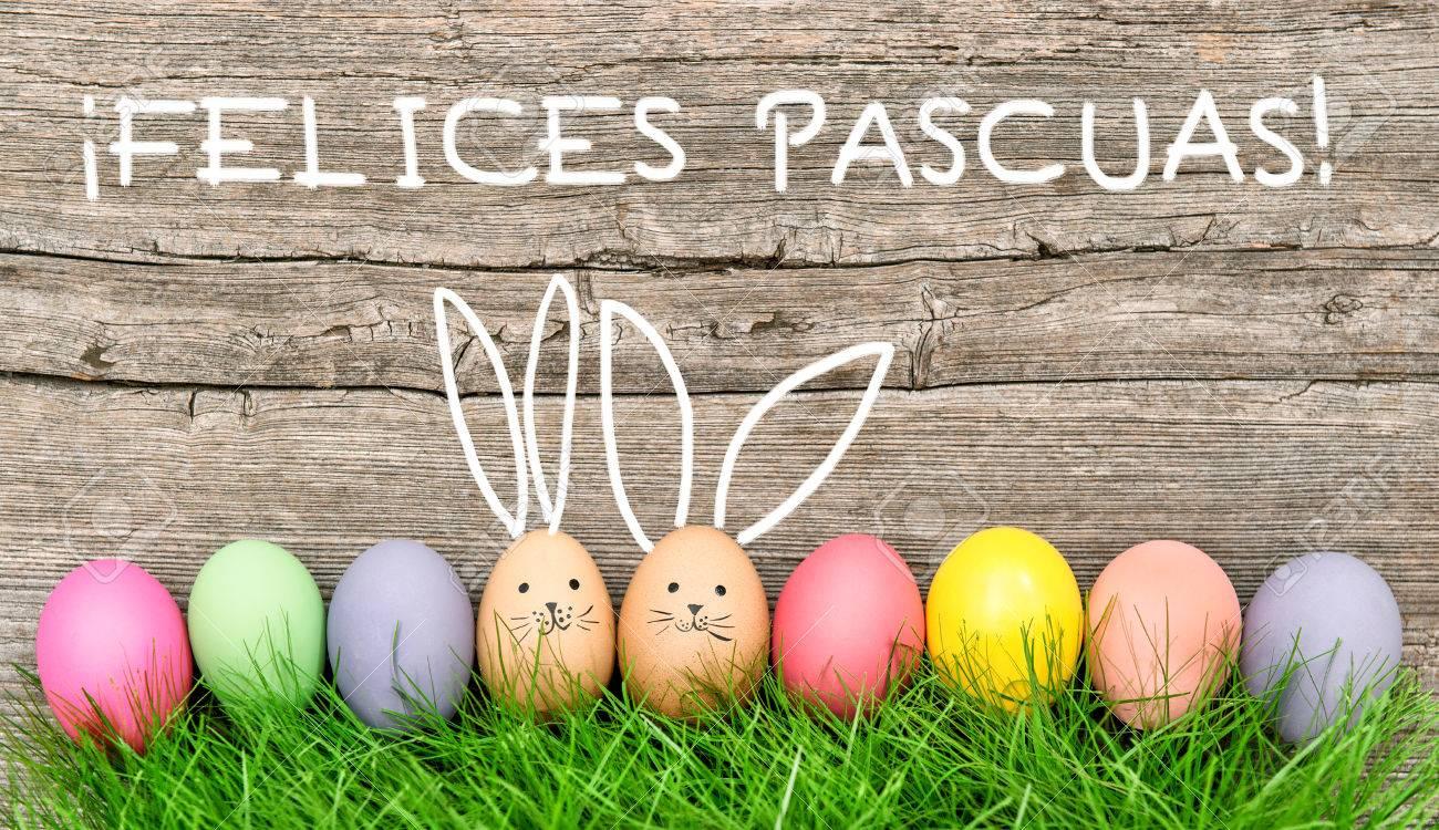 Ostereier Niedlichen Häschen Lustige Dekoration Felices Pascuas