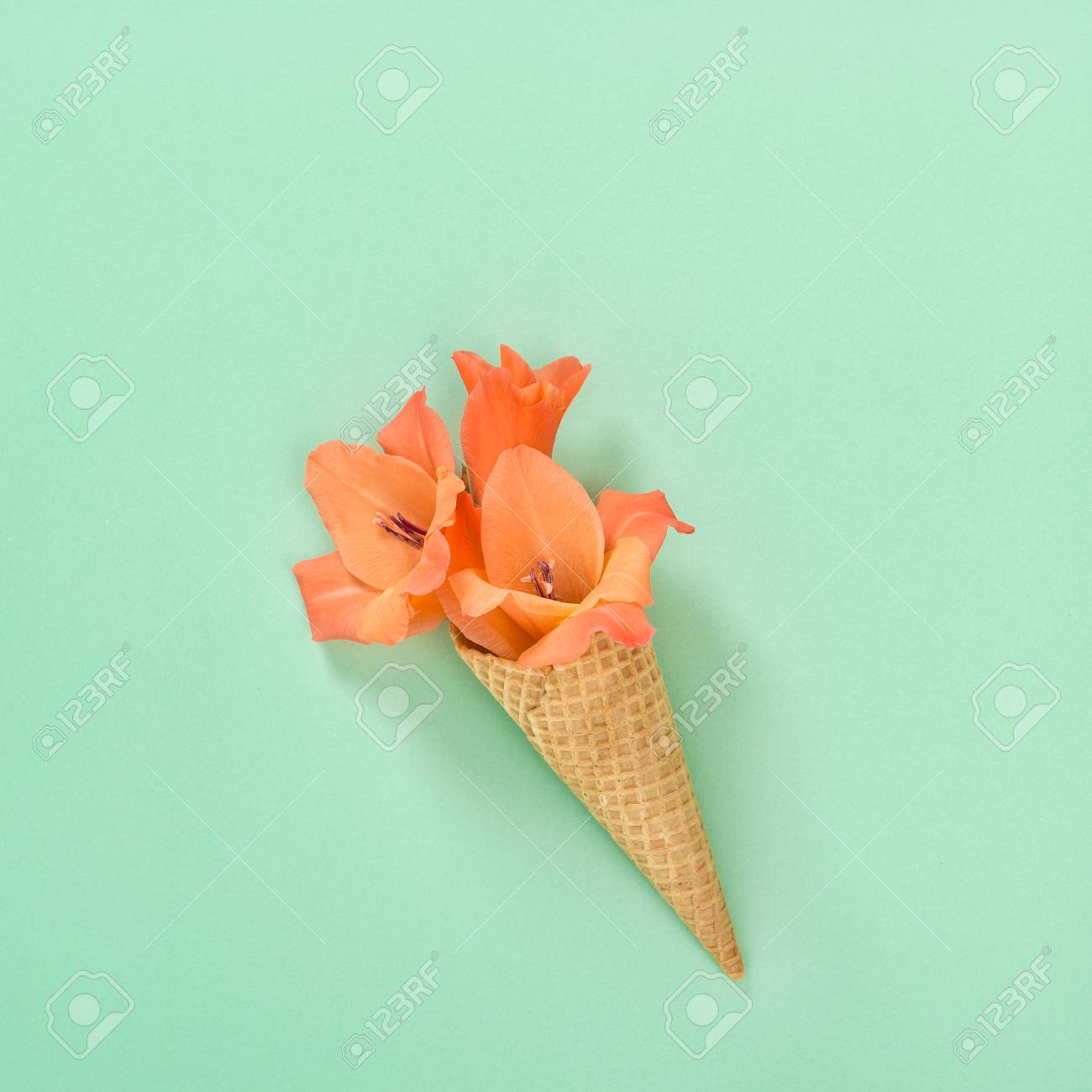 Gladiolus Flower In Ice Cream Waffle Cone On Color Background