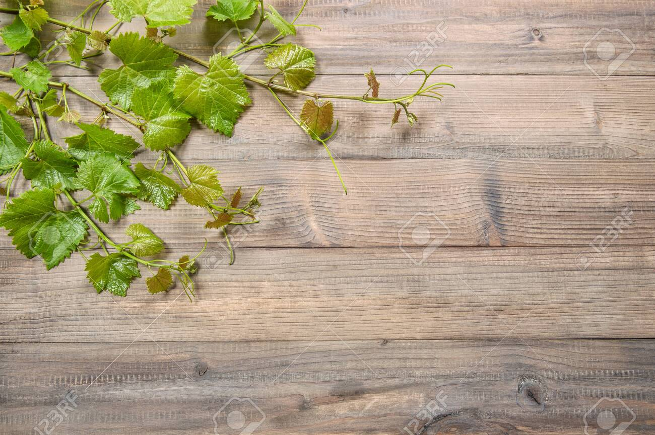 Vine Leaves Border On Wooden Background Green Grape Leaf Stock Photo Picture And Royalty Free Image Image 128604532
