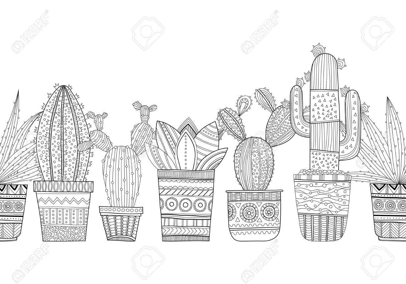 Ilustración En Blanco Y Negro De Cactus Ornamentales Y Suculentas Para Colorear Libros Páginas