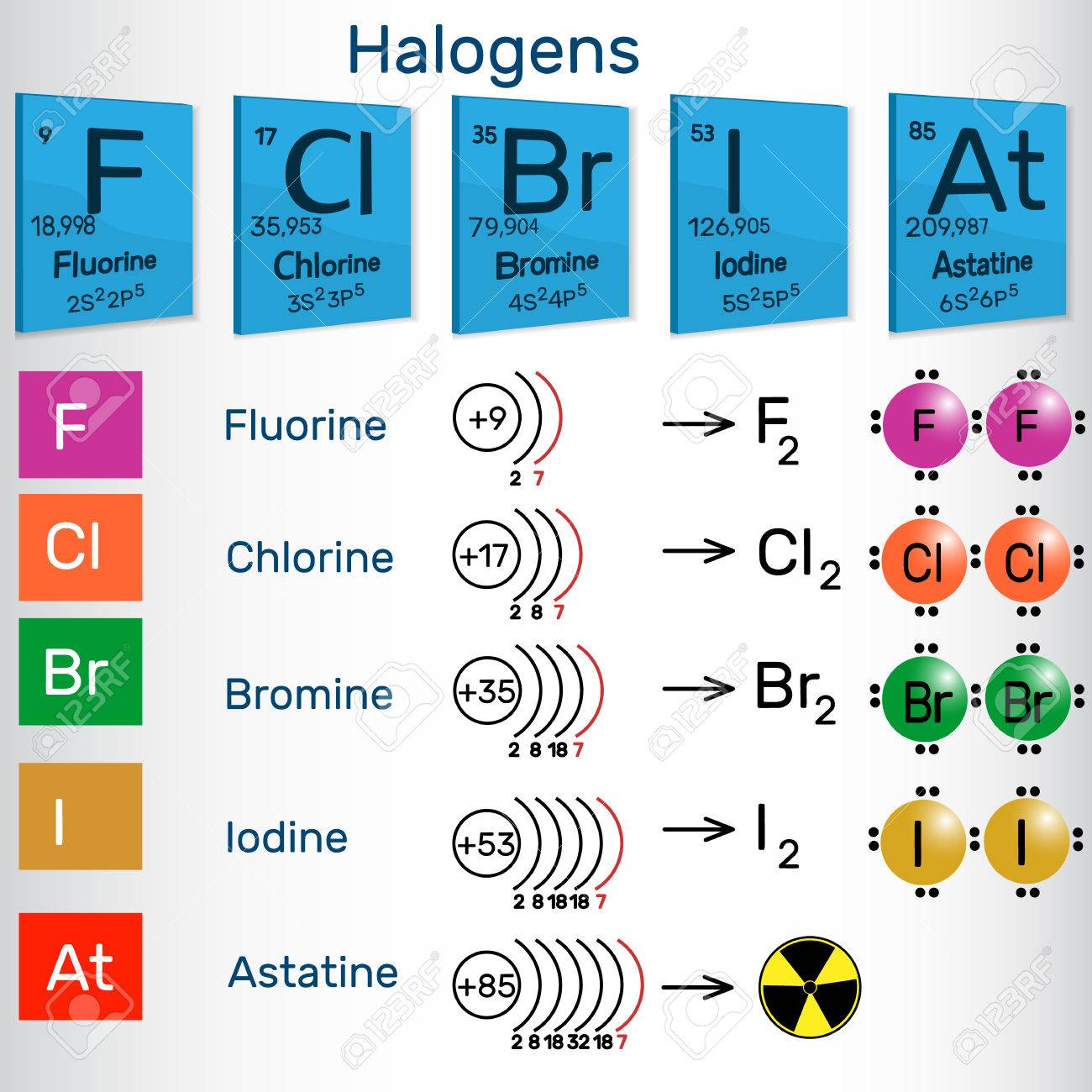 Halogens chemical elements of periodic table vector illustration halogens chemical elements of periodic table vector illustration stock vector 82167668 urtaz Gallery