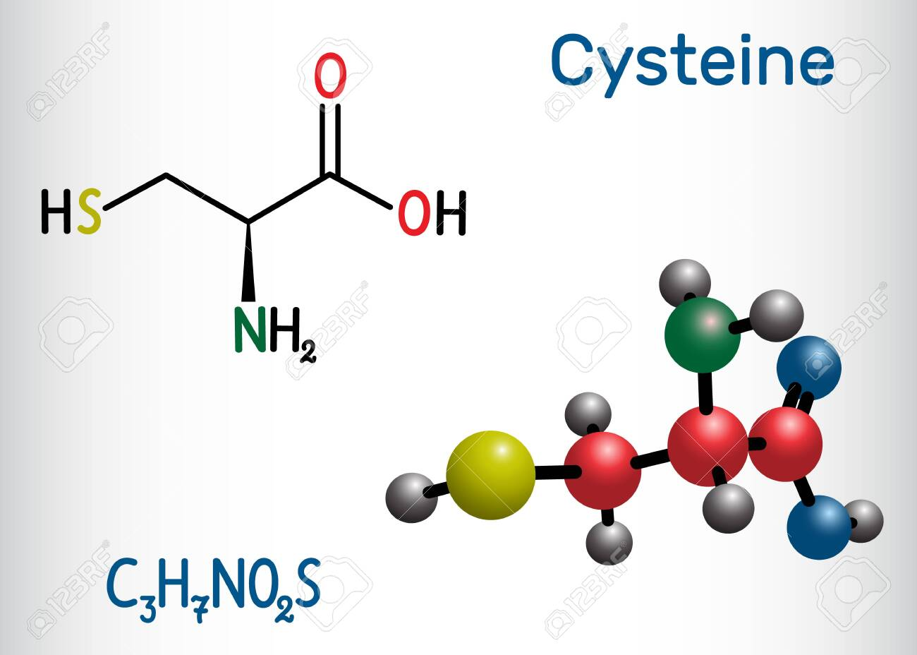 Cysteine (L-cysteine, Cys, C) Proteinogenic Amino Acid Molecule... Royalty  Free Cliparts, Vectors, And Stock Illustration. Image 124098270.