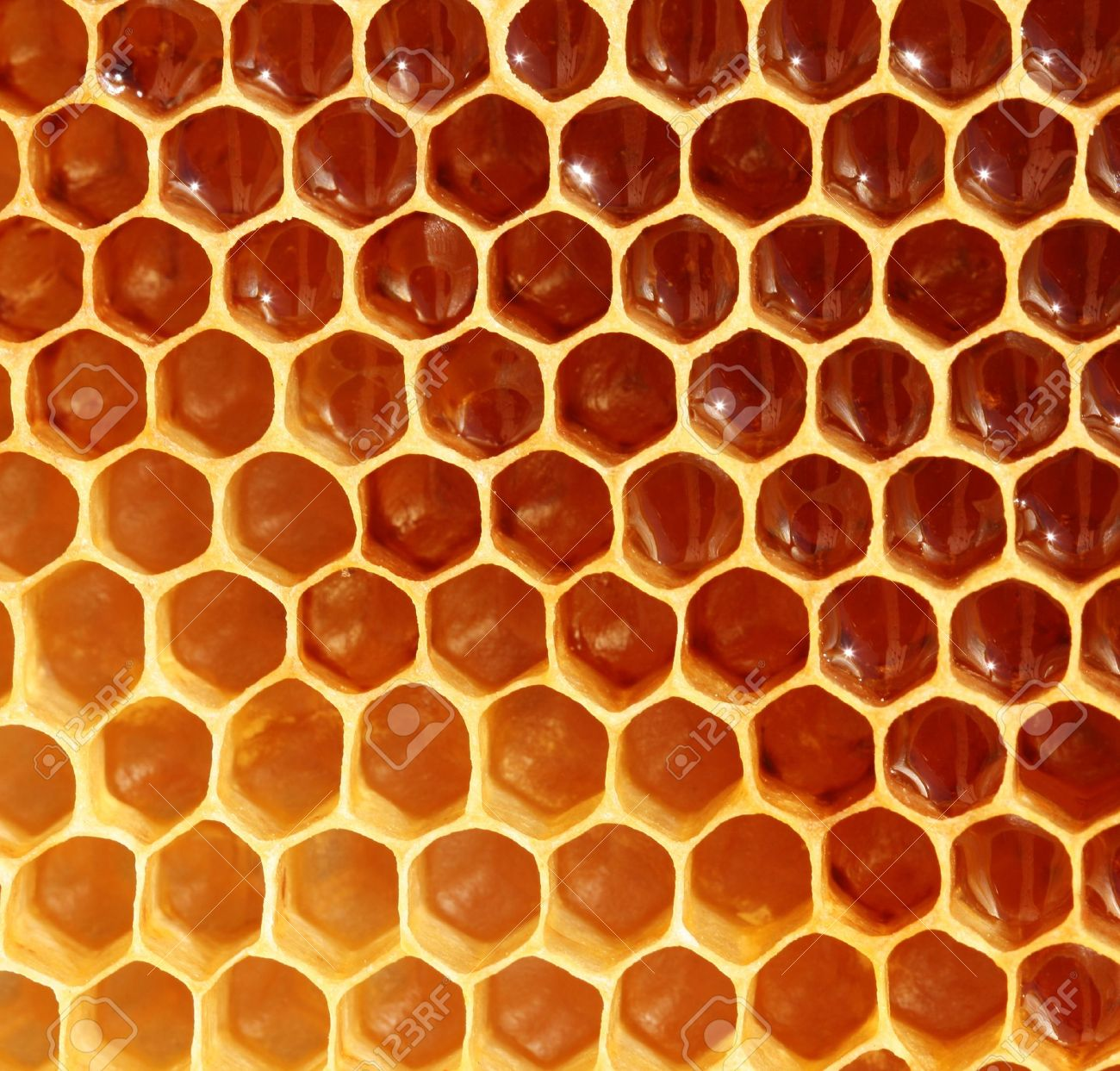 Honeycomb background stock photo picture and royalty free image honeycomb background stock photo 15220405 voltagebd Image collections