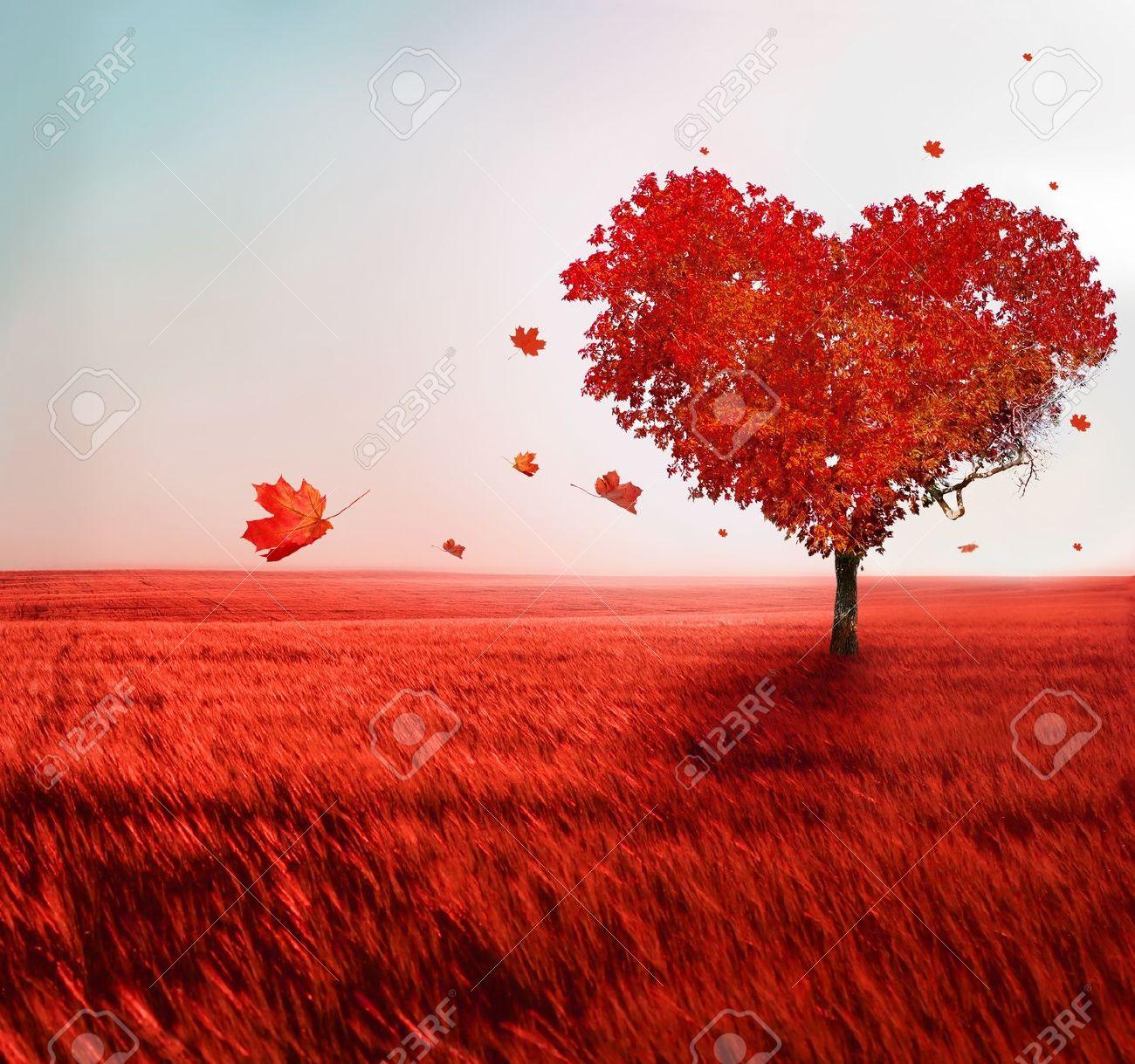 Tree of love - 21927375