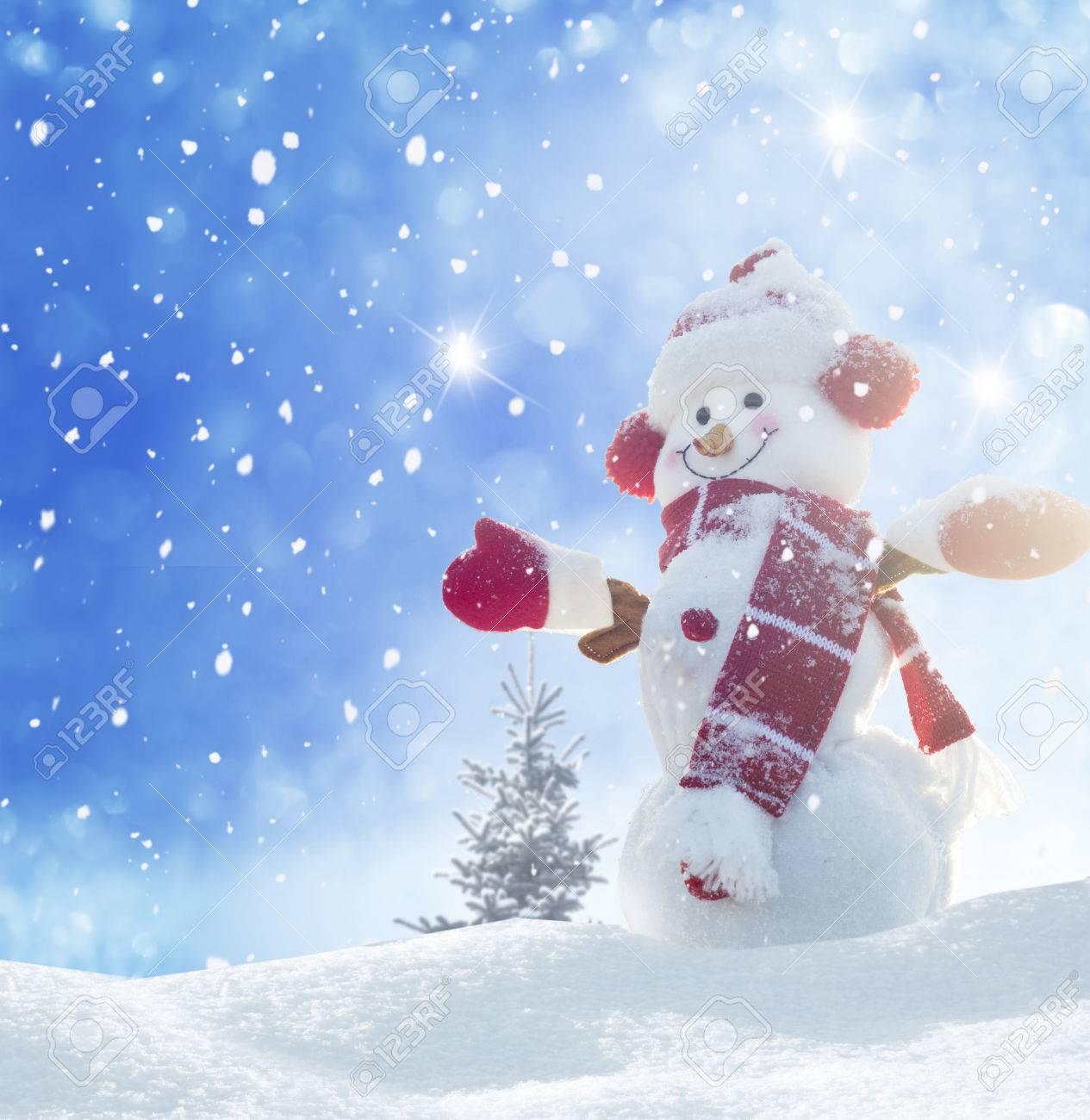 Glücklicher Schneemann Stehend Im Winter, Weihnachten Landschaft ...