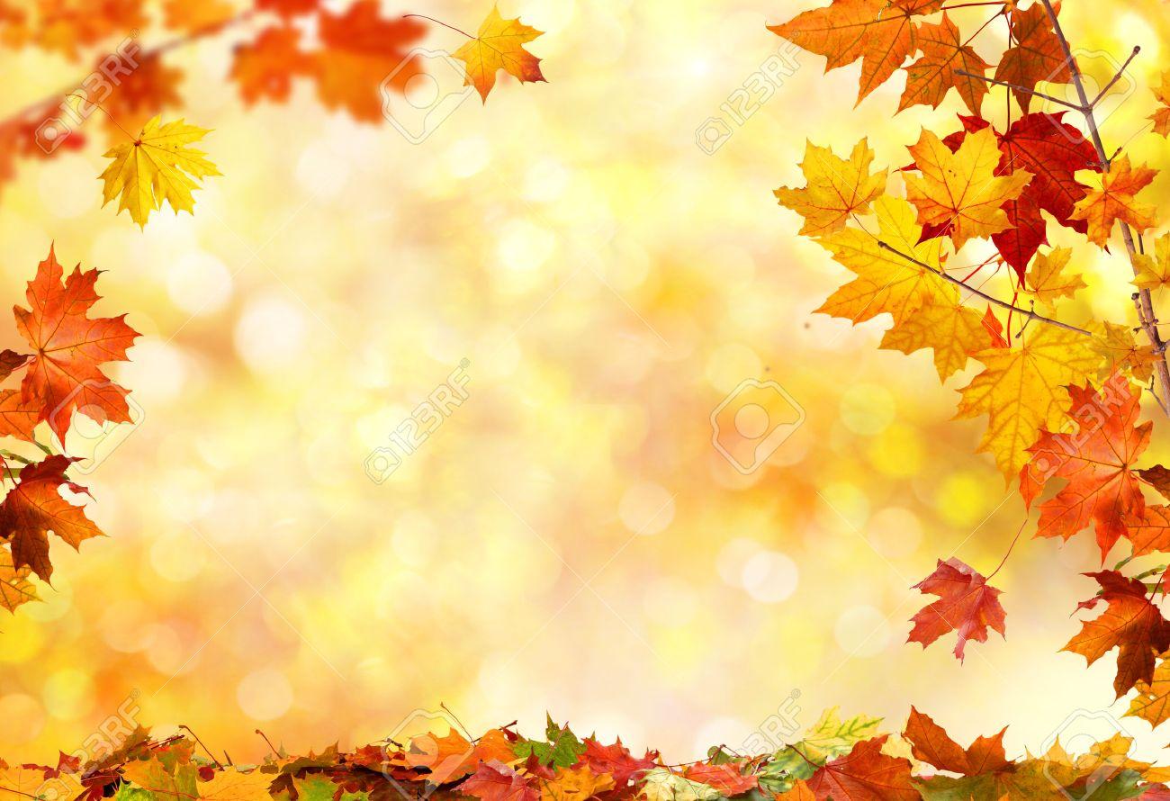Herbst Hintergrund Mit Ahorn Blatter Lizenzfreie Fotos Bilder Und