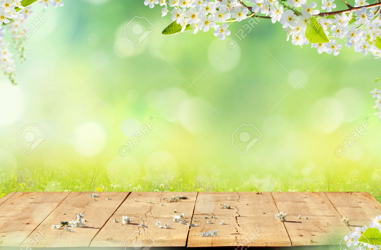 Spring background with wooden table. Spring blossom with copy space. - 165005903