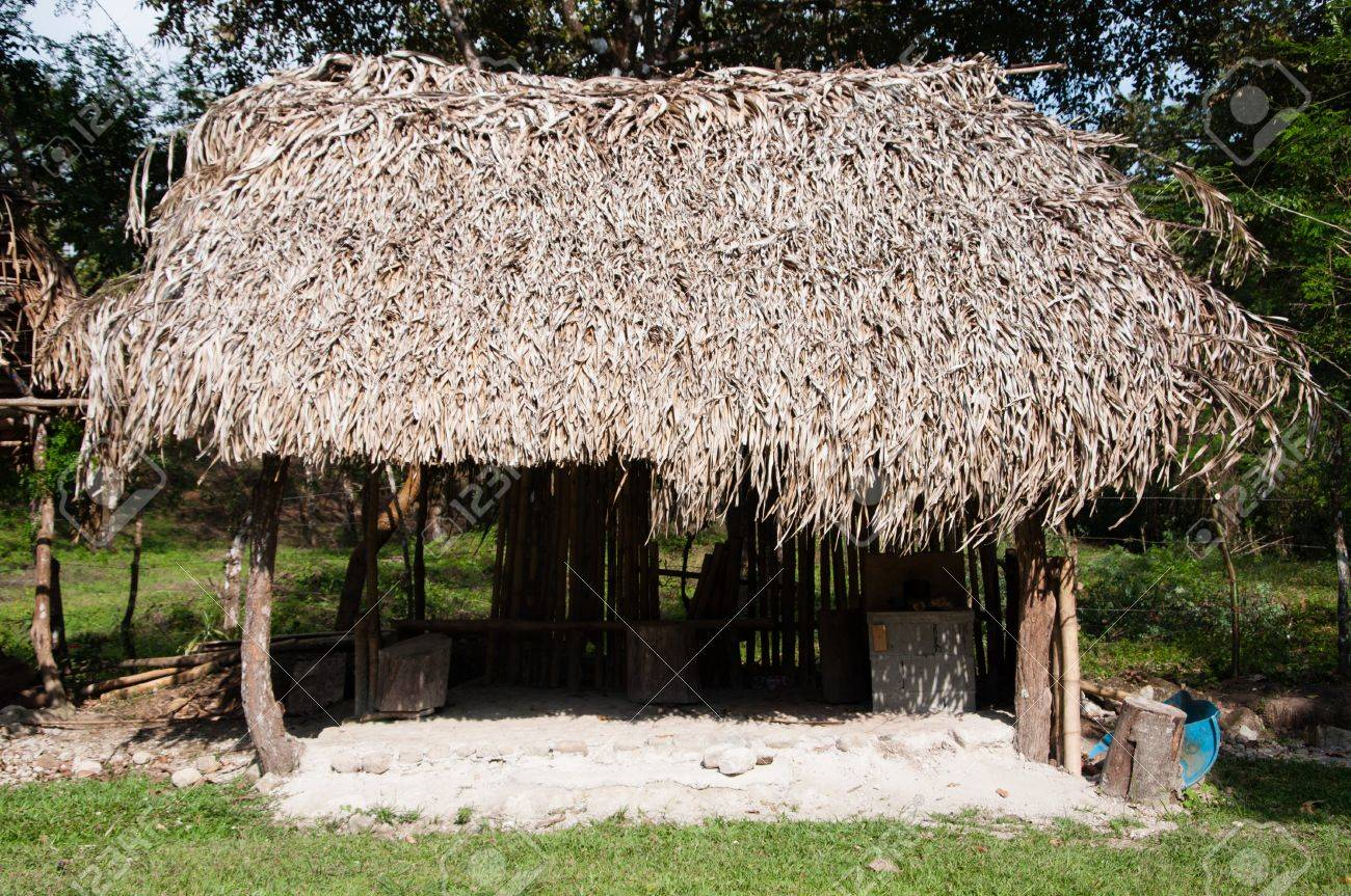 Closeup Of A Thatched Roof Tiki Hut Palapa With A Straw Roof Stock Photo    18425418