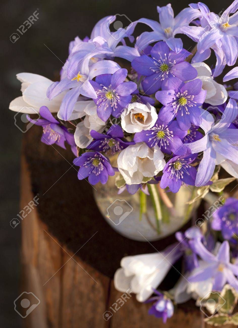 Bouquet Of Spring Flowers Stock Photo Picture And Royalty Free