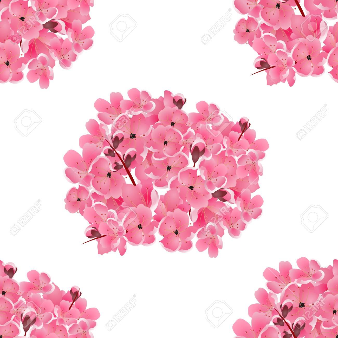 Sakura Ramo De Flores De Cerezo Rosa Aislado En Blanco Fondo