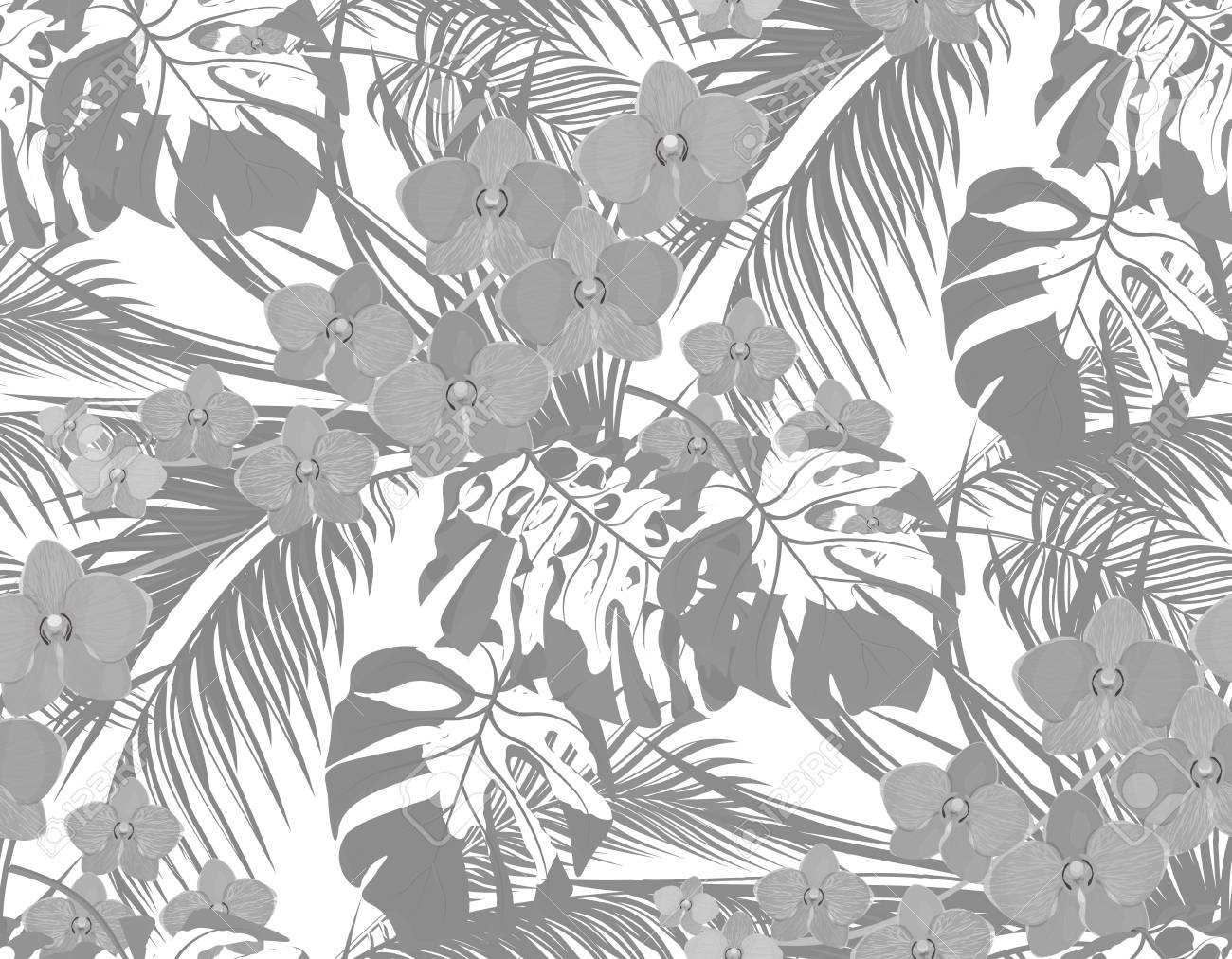 Illustration jungle black andwhite leaves of tropical palm trees monstera agaves and orchids drops of dew rain seamless isolated on white