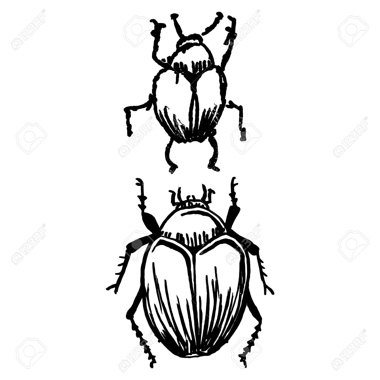 insect black white cartoon pest clipart - Insect, Black, White, transparent clip  art