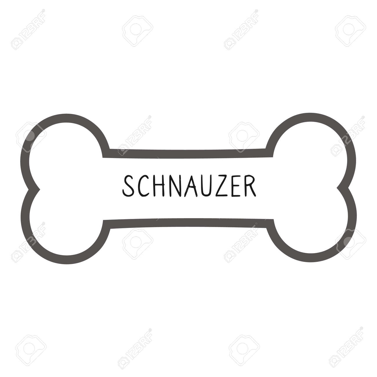 Cute cartoon Schnauzer text on collar dog tag vector clipart. Purebred doggy identification medal for pet id. Domestic dog for pet pooch. - 169440553