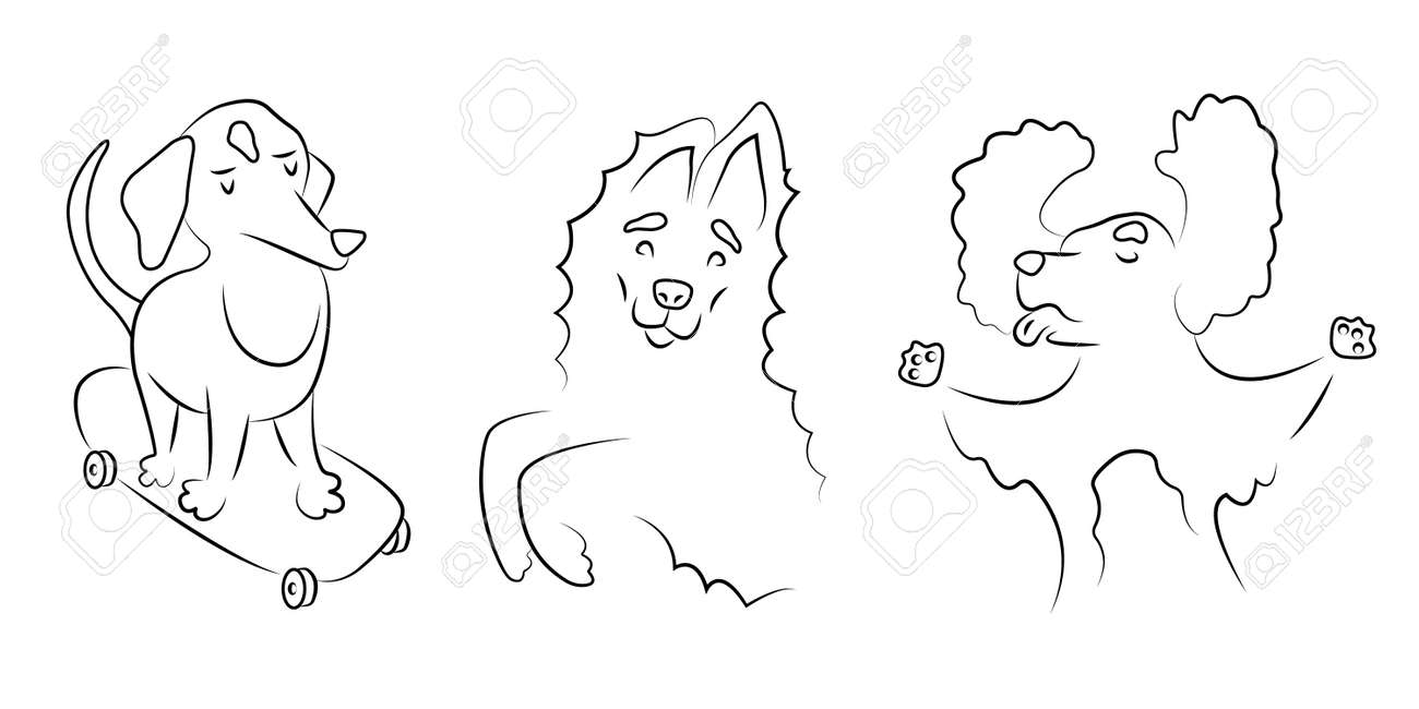 Collection of linear illustrations with different breeds of dogs. Line pet icons set. Funny animals play and quarrel. Posters for dog lovers. - 169281651