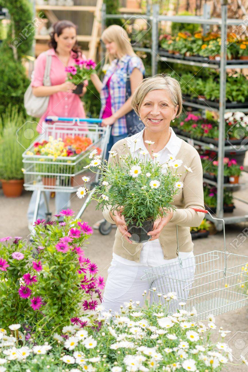 Senior lady shopping for flowers at garden centre smiling Stock Photo - 14735485