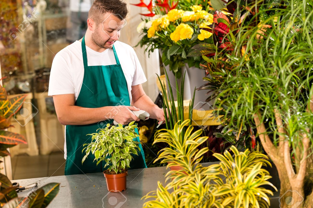 Man florist reading price barcode reader flower shop plant stock man florist reading price barcode reader flower shop plant stock photo 17690745 izmirmasajfo Gallery