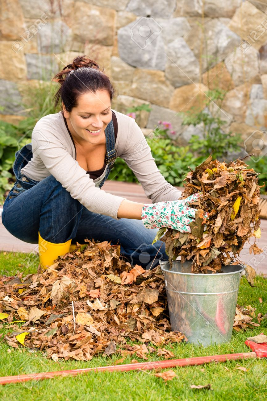Backyard Cleaning happy woman autumn putting dry leaves bucket backyard cleaning