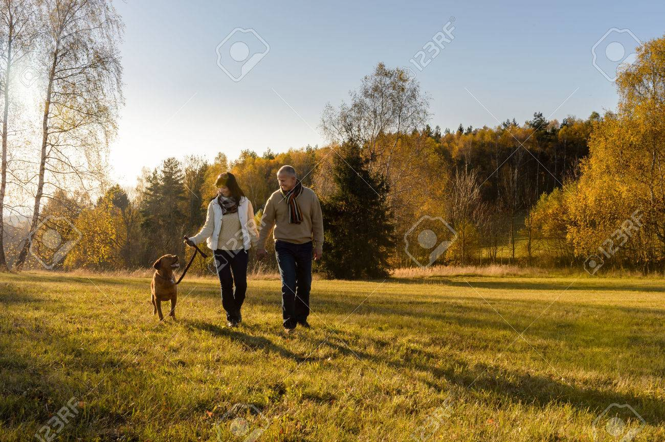 Mature couple walking retriever dog autumn sunset landscape holding hands Standard-Bild - 31577426