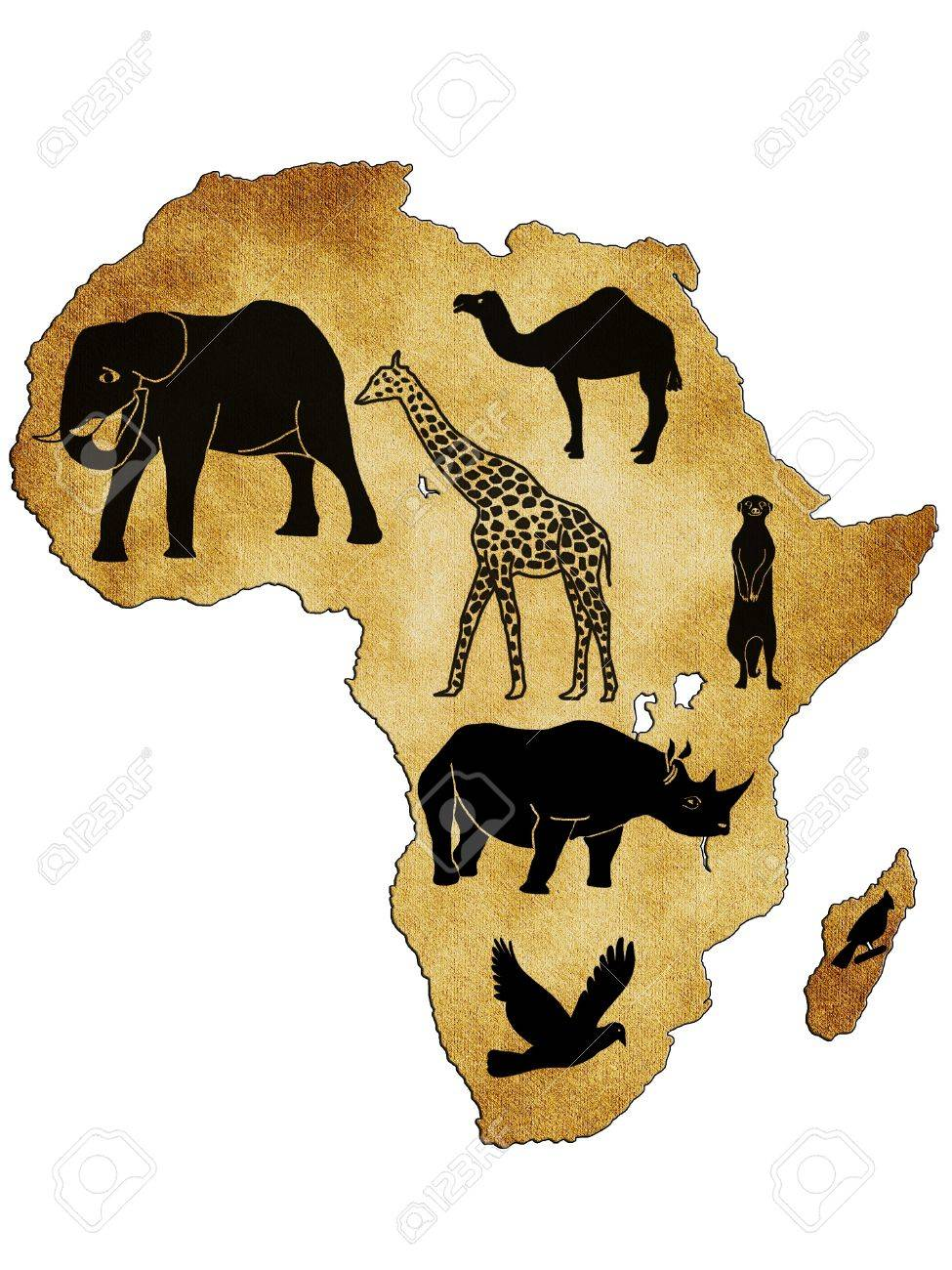 Map Of Africa With Pictures Of Animals Stock Photo, Picture And