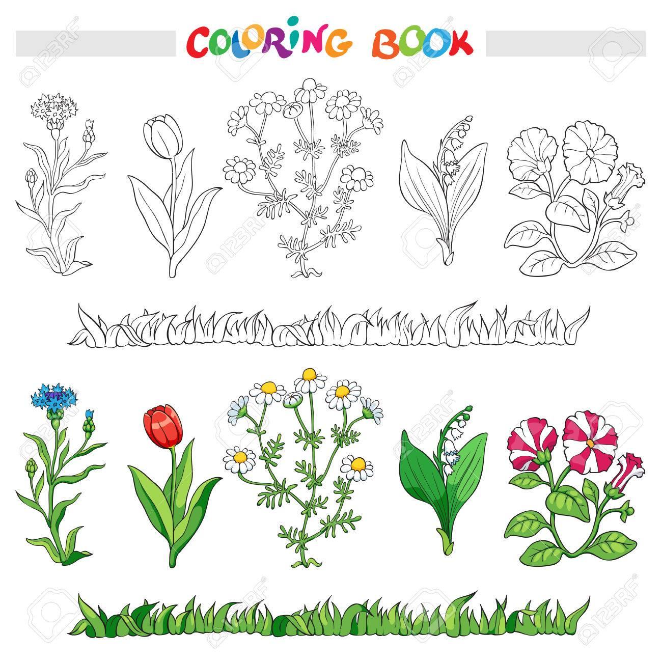 Libro Para Colorear O Una Página Con Harina De Maíz, Flor, Margarita ...