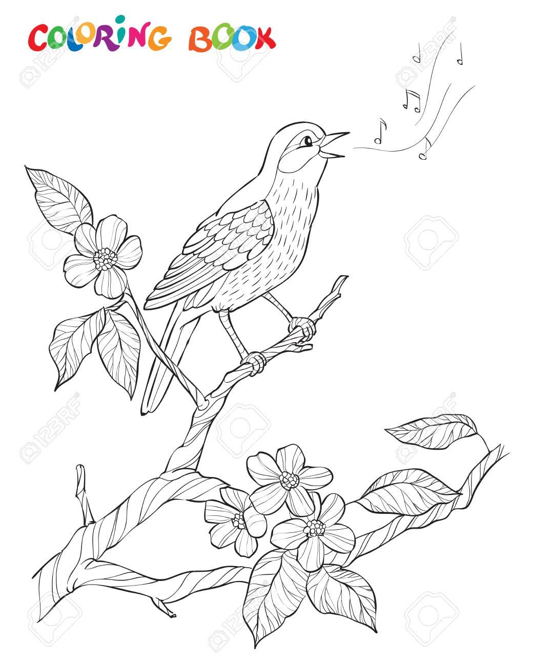 Composición Del Jardín De La Primavera Un Pájaro Canta En Una Rama De La Floración Ilustración Blanco Y Negro Decorativo Adornado Página Para