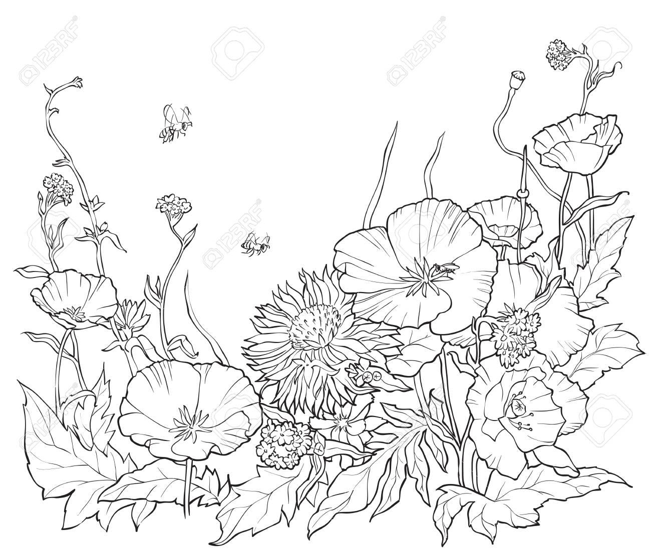 Libro Para Colorear Con Flores Dibujadas A Mano. Ilustración De ...